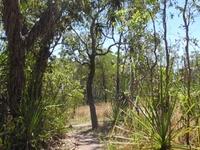 Florence Creek Trail