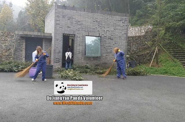Chengdu Panda Volunteer Program Photos