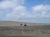 Dunes In Villa Gesell