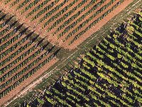 Eger-Tokaj Hilly Wine Region