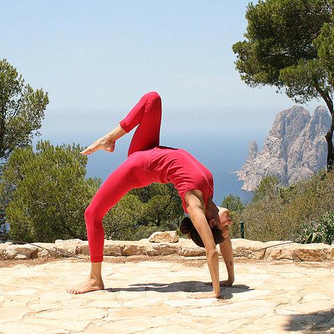 Yoga Trek in Nepal Photos