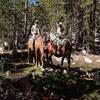 Elam Loop and Horse Camp Trail