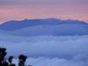 Leuser Adventure: Trekking & Camping to Gunung Kemiri Peak