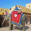 Private Tour: Amber Fort & Jal Mahal Including Elephant Ride