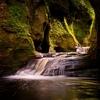 Finnich Glen Gorge - Scotland UK