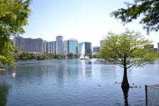 FL Orlando - From Lake Eola Park