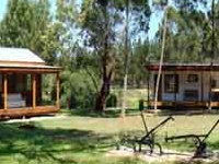 Forest Department Lodges