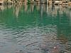 Five Dragon Spring Pool
