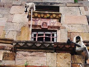 Gauri Somnath Templo