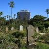 Gore Hill Cemetery