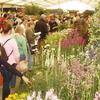 Hampton Court Palace Flower Show