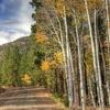Fall Colors Along Hell's Backbone Road