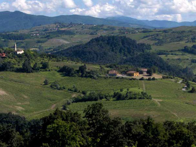 Hills Of The Oltrepo Pavese