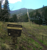 Humphreys Trail
