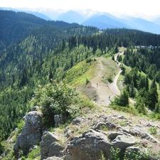 Hurricane Ridge Trail