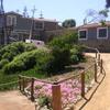 Casa de Isla Negra