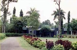 Kali Wilderness and Adventure Camp
