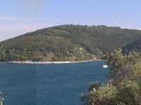 Isla Palmaria