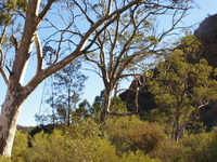Vulkathunha-Gammon Ranges National Park