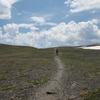 Jedediah Smith Wilderness - Grand Tetons - Wyoming - USA