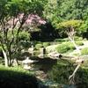 Japanese Gardens At Mt Coot Tha