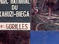Kahuzi Biega National Park