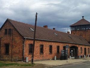 Super Saver Tour Auschwitz, Birkenau and Salt Mine Fotos