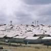 Camp In Kakata
