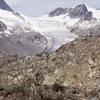 Montañas Mackenzie