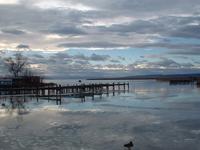 Lake Neusiedl