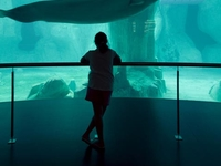 L'Oceanografic en la Ciudad de las Artes y las Ciencias