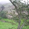 Lima Region