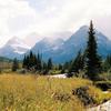 Loneman Mountain Trail