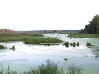 Losiny Ostrov National Park