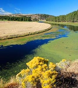 Lost River California