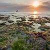 Low Tide @ Nungwi - Zanzibar - Tanzania