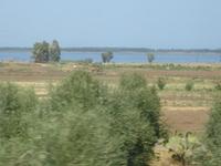Lake Lesina