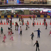 The Indoor Ice Rink
