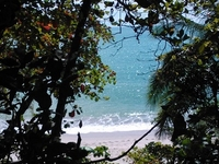 Manuel Antonio National Park Costa Rica 54