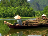 Essential Vietnam for Groups
