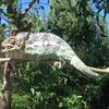 Midongy Du Sud National Park