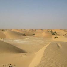 The Desert North Of Nouakchott