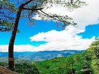 Minas Park View