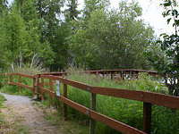Morgan's Landing Campground