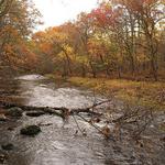 Mount Hope River