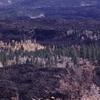 Markagunt Plateau