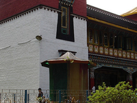 Namgyal Research Institute Of Tibetology