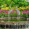 National Orchid Farms