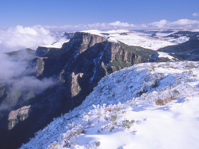 Snow In The Planalto Serrano - Santa Catarina