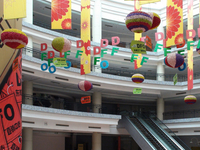 New South China Mall